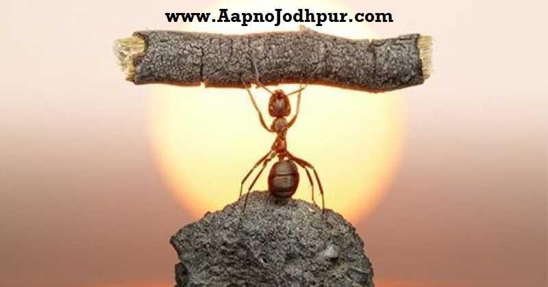 Do Aapno Jodhpur Need Real Strengths or pretend strength?