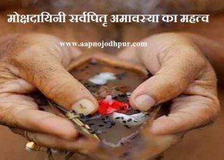 Sarva Pitru Amavasya 2019: जानिए मोक्षदायिनी सर्वपितृ अमावस्या का महत्व और श्राद्ध विधि।13 सितंबर से शुरू हुए पितृपक्ष का समापन28 सितंबर के दिन आश्विन माह की अमावस्या को सर्वपितृ अमावस्या के साथ होगा।सर्वपितृ अमावस्या के दिनशनिवारका महासंयोग अत्यंत सौभाग्यशाली है। जानिएसर्वपितृ अमावस्या Date, time