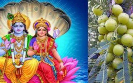 Amla Navami 2018: आंवला (अक्षय) नवमी पूजा विधि, पौराणिक कथा व महत्व शनिवार 17 नवंबर 2018 को आंवला नवमी का पर्व है, इसे अक्षय नवमी भी कहते हैं