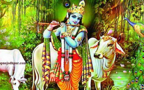 Gopashtami 2019: सुख-समृद्धि में होगी वृद्धि, जानिए गोपाष्टमी का उद्देश्य, पूजन विधि, कथा व महत्व। कार्तिक मास के शुक्ल पक्ष की अष्टमी तिथि (4 नवंबर) को गोपाष्टमी मनाई जाएगी। इस दिन गाय और गोविंद की पूजाकरने का विधान है। गोपाष्टमीकी पौराणिक कथा, Gopashtami Story, ऐसे मनाएं Gopashtami 2019 पर्व