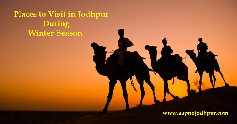 8 Places To Visit During The Winter Season in Jodhpur, Places to visit in Jodhpur, tourist places in jodhpur, what to visit in jodhpur