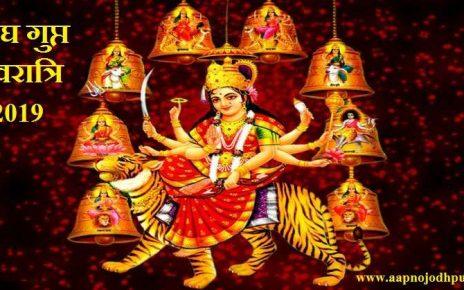 Magh Gupt Navratri 2019: माघ गुप्त नवरात्रि पूजा विधि, शुभ मुहूर्त, महत्व, Magh Gupt Navratri 2019 Dates, गुप्त नवरात्र पूजा विधि, गुप्त नवरात्र Mahatva, गुप्त नवरात्रिमें 10 महाविद्याओं की होती है पूजा,