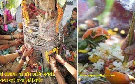 सोमवती अमावस्या और शनि जयंती, क्या करें कि जीवन में शुभता आए: सोमवार को aane वाली अमावस्या को सोमवती अमावस्या कहते है। हिंदू धर्ममें सोमवती अमावस्यास्नान, दान के लिए शुभ और विशेष धार्मिक महत्व रखती है।इस बार ज्येष्ठ कृष्ण पक्ष की सोमवती अमावस्याऔरशनि जयंती ka संयोग 3 जून, 2019 को बन रहा है।