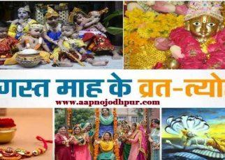 August 2019 Festivals:हिंदू कैलेंडर के अनुसार अगस्त के पहले 15 दिन सावन के होंगे जबकि 15 दिन भाद्रपद के। महीने की शुरुआतमें हरियालीअमावस्याऔर फिरहरियाली तीज, नाग पंचमी, पुत्रदा एकादशी, कजरी तीज, ऊब छठ का व्रत,कृष्ण जन्माष्टमीसे लेकर अजा एकादशीजैसे व्रत-त्योहार भी इस महीने आने वाले हैं।
