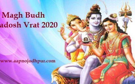 Magh Pradosh Vrat 2020: माघ महीने के कृष्ण पक्ष की त्रयोदशी तिथि 22 जनवरी दिन बुधवार को प्रदोष व्रत पड़ रहा है। जानें बुध प्रदोष व्रत पूजा विधि, शुभ मुहूर्त, व्रत का लाभ और व्रत से जुड़ी मान्यता