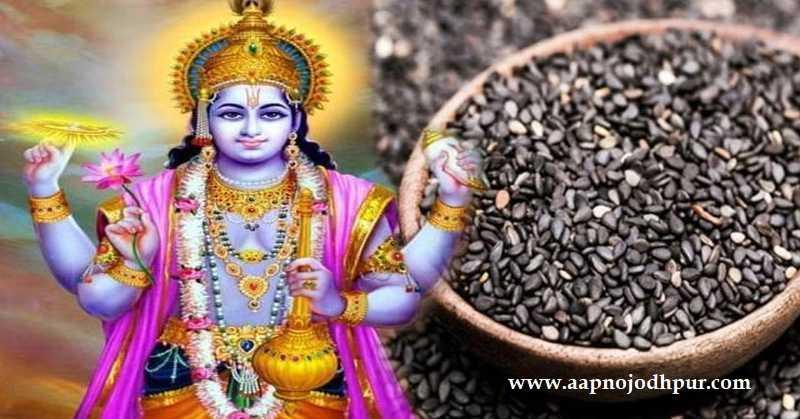 Shattila Ekadashi 2020, 20 जनवरी सोमवारको है। जानिए षटतिला एकादशी व्रत कथा, Bhagwan Vishnu पूजा शुभ मुहूर्त, विधि महत्व, तिल का प्रयोग, पारण का समय।