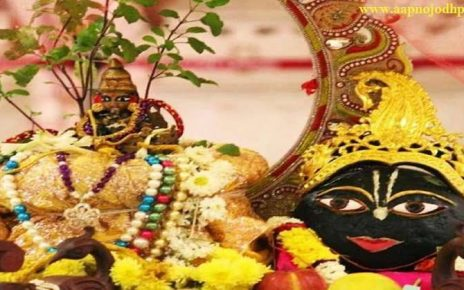 इस तारीख को है तुलसी विवाह, जानिए तुलसी विवाह विधि, शुभ मुहूर्त, तुलसी विवाह पौराणिक कथा, तुलसी विवाह महत्व, Tulsi Vivah 2020 Shubh Muhurat